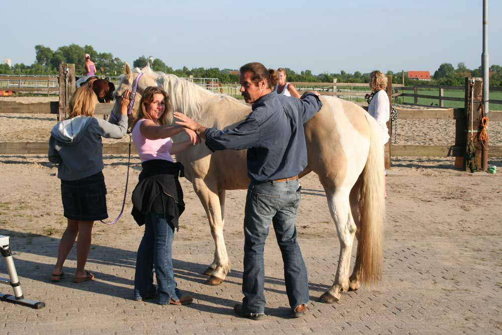 Paardenchiropractie_4.jpg